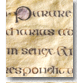 St Chad Gospels, transcription